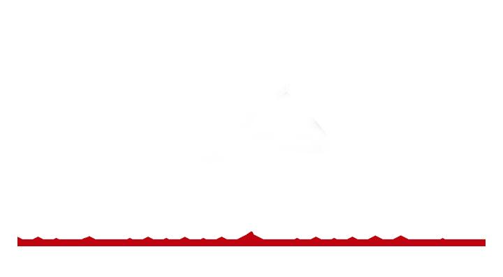 ADUANA SANTOS Logo